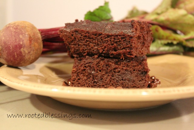 Coconut Flour Beet Brownies