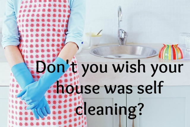 Clean My House don't your wish your house could clean itself? - rooted blessings