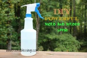 DIY Mold and Mildew Spray