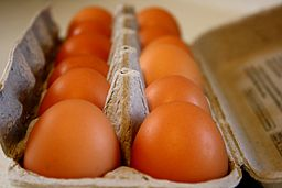 256px-Brown-eggs