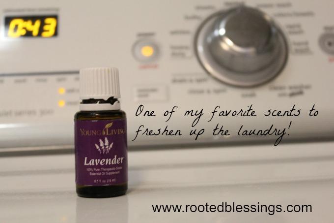 lavenderlaundry