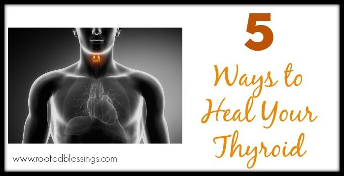 Thyroidheader