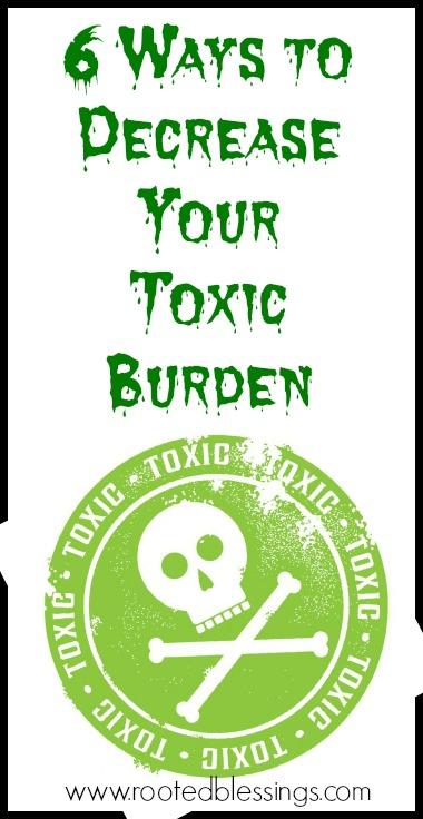 toxicburdenpin