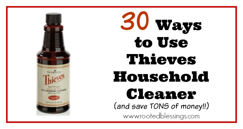 30 Ways to Use Thieves Household Cleaner - 2